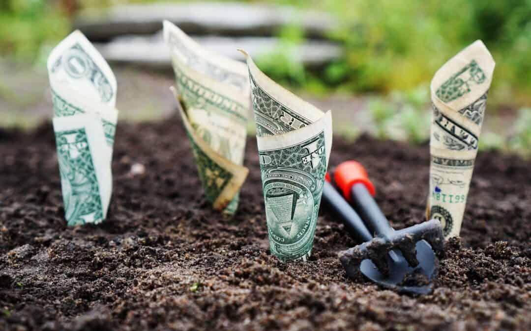 Beleggen met weinig geld; 4 gratis tips